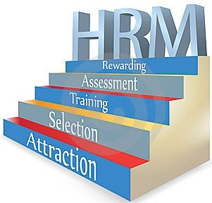 Importance of Transcripts for New HR Applicants