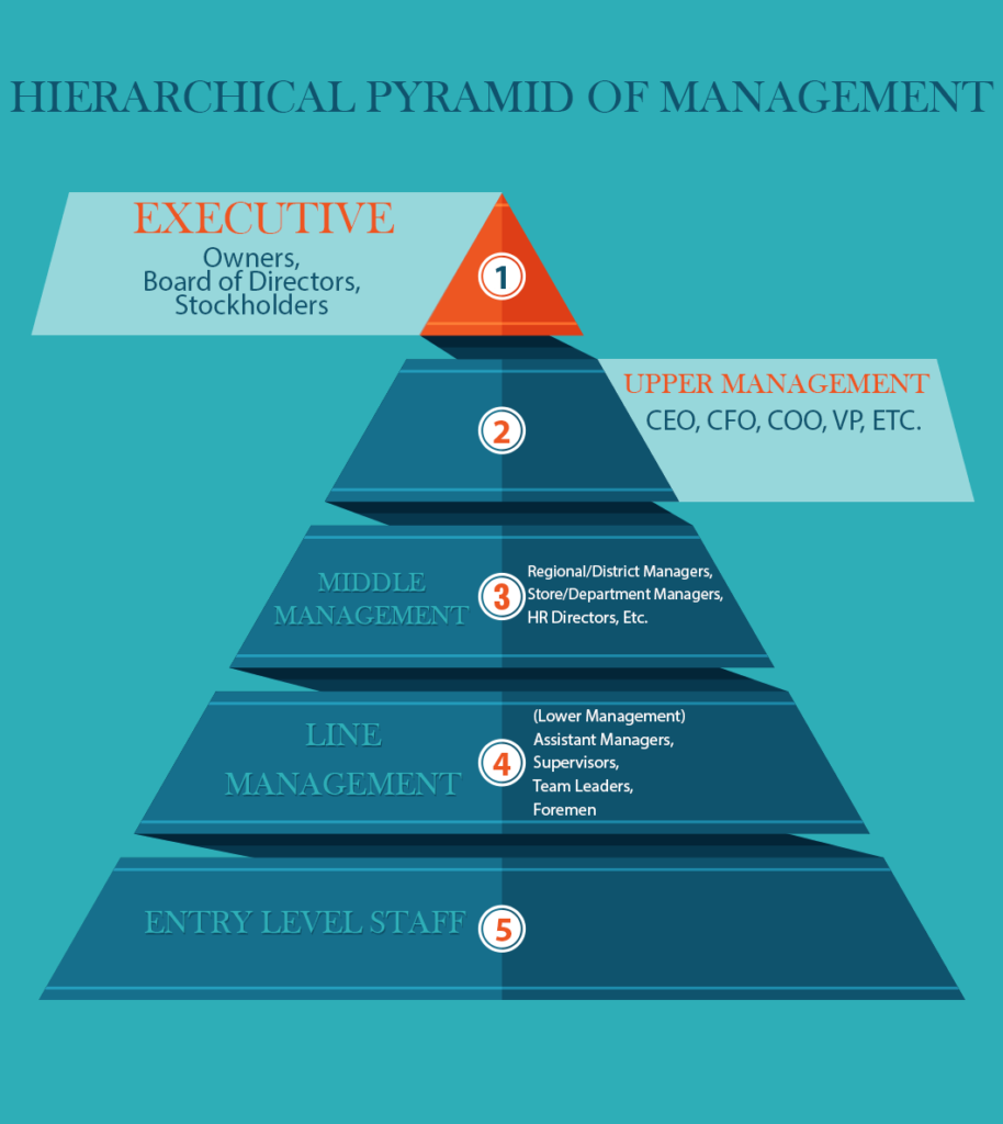 Hhierarchical pyramid of management 1 executive 2 upper management 3 middle management 4 line management 5 entry level staff